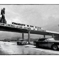 Cuba-cars-17-web