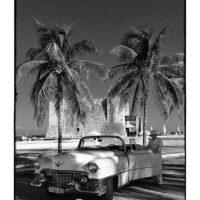 Cuba-cars-34-web