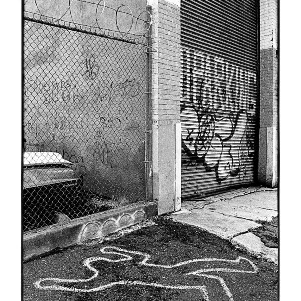 New-york-11-web